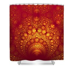 Swallowed Shower Curtain
