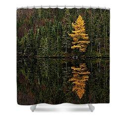 Tamarack Defiance Shower Curtain