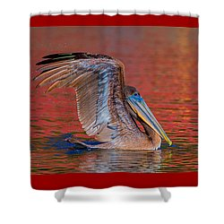 Tchefuncte Pelican Shower Curtain