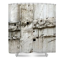 Textural Antiquities Rome Shower Curtain