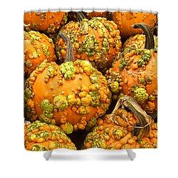 Textured Pumpkins  Shower Curtain