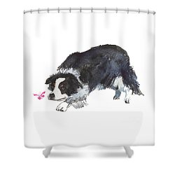 The Collie And Pink Butterfly Shower Curtain