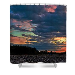 The Cotton Field  Shower Curtain