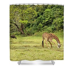Shower Curtain featuring the photograph The Giraffe And The Cape Buffalo by Kay Brewer