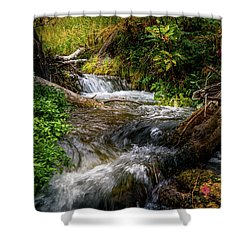 Shower Curtain featuring the photograph The Giving Stream by TL Mair