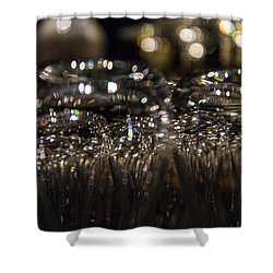 Shower Curtain featuring the photograph The Gleam In Her Eye by Alex Lapidus