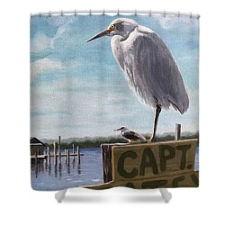 The Guardians - Florida Oil Painting Shower Curtain
