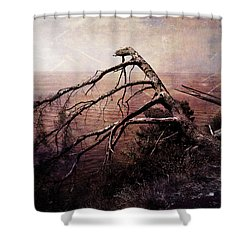 Shower Curtain featuring the photograph The Invisible Force by Randi Grace Nilsberg