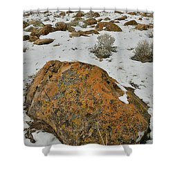The Lichen Covered Boulders Of The Book Cliffs Shower Curtain