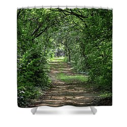 Shower Curtain featuring the photograph The Light Beyond by Dale Kincaid