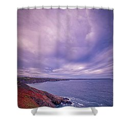 The Lizard Point Shower Curtain