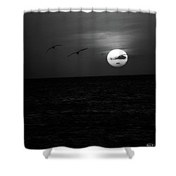 The Long Flight Shower Curtain