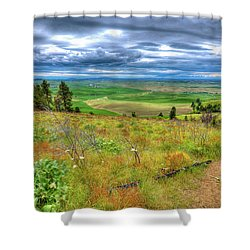 Shower Curtain featuring the photograph The Path Down Kamiak Butte by David Patterson
