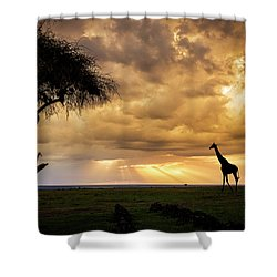 The Plains Of Africa Shower Curtain