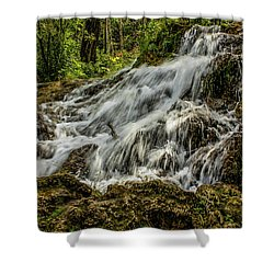 The Springs In It's Summer Green, Big Hill Springs Provincial Re Shower Curtain