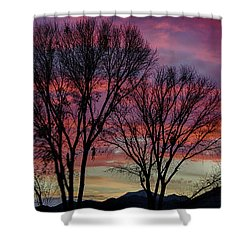 The Trees Know Sunset Shower Curtain