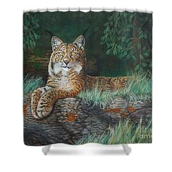 The Wild Cat  Shower Curtain