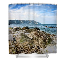 The Winter Sea #1 Shower Curtain