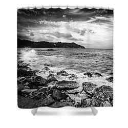 The Winter Sea #4 Shower Curtain