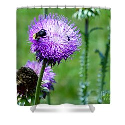 Thistle Visitors Shower Curtain