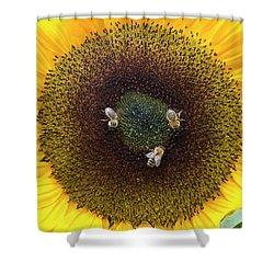 Three Bees Shower Curtain