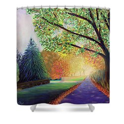 Topstone Road Shower Curtain