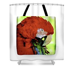 Shower Curtain featuring the photograph Tote Bags by Debbie Stahre