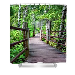 Trail At Gooseberry Falls Shower Curtain