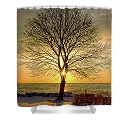 Shower Curtain featuring the photograph Tree Framed Sunrise New Hampshire by Nathan Bush
