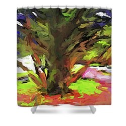 Tree With The Open Arms Shower Curtain