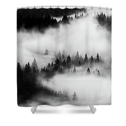 Shower Curtain featuring the photograph Trees In The Mist 1 by Stephen Holst