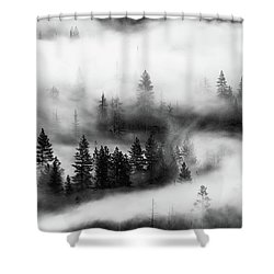 Shower Curtain featuring the photograph Trees In The Mist 2 by Stephen Holst