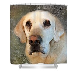 Tribute To Leroy 2 Shower Curtain