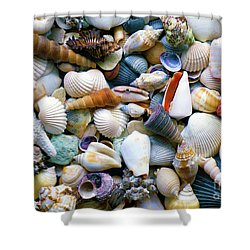 Shower Curtain featuring the photograph Tropical Treasure Seashells A91218 by Mas Art Studio