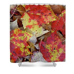 True Autumn Colors Shower Curtain