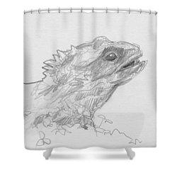 Tuatara Shower Curtain