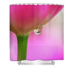 Tulip Drop Shower Curtain