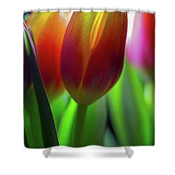 Shower Curtain featuring the photograph Tulips by John Rodrigues