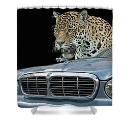 Two Jaguars 2 Shower Curtain