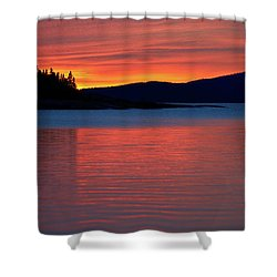 Upended Shower Curtain