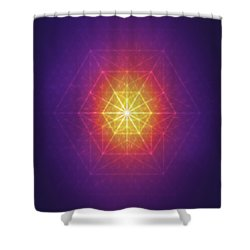 Vector Equilibrium Shower Curtain