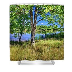 Shower Curtain featuring the photograph Viele Lake 4 by Dan Miller
