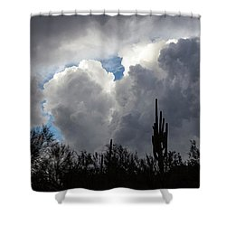 Shower Curtain featuring the photograph Visions Beyond by Rick Furmanek