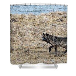 W58 Shower Curtain