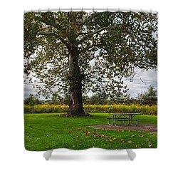 Walnut Woods Tree - 1 Shower Curtain