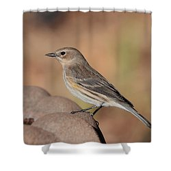 Warbler 4231 Shower Curtain
