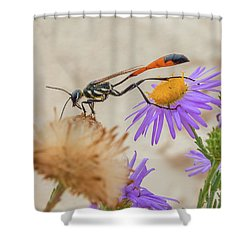 Wasp At White Sands Shower Curtain