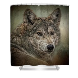 Watchful Shower Curtain