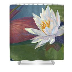 Water Beauty Shower Curtain