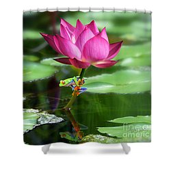 Water Lily And Little Frog Shower Curtain